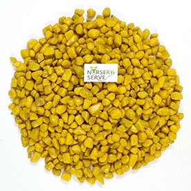 Yellow Color Decorative Stone/pebbles for Garden/Lawn/Aquarium Decoration 500GM